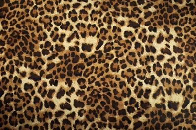 Kleidung mit tierischen Mustern!